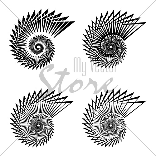 shell black line symbol vector
