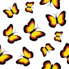 vector butterflies seamless