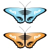 Vector colored butterflies