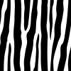 vector seamless zebra pattern