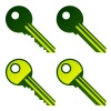 vector green house keys