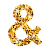 vector golden confetti ampersand