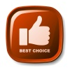 vector red best choice button